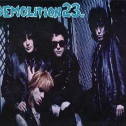 Demolition 23