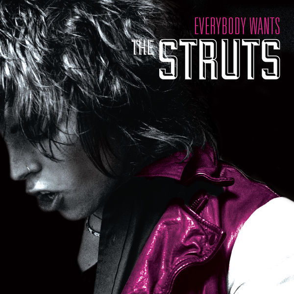 "The Struts ""Everybody Wants"""