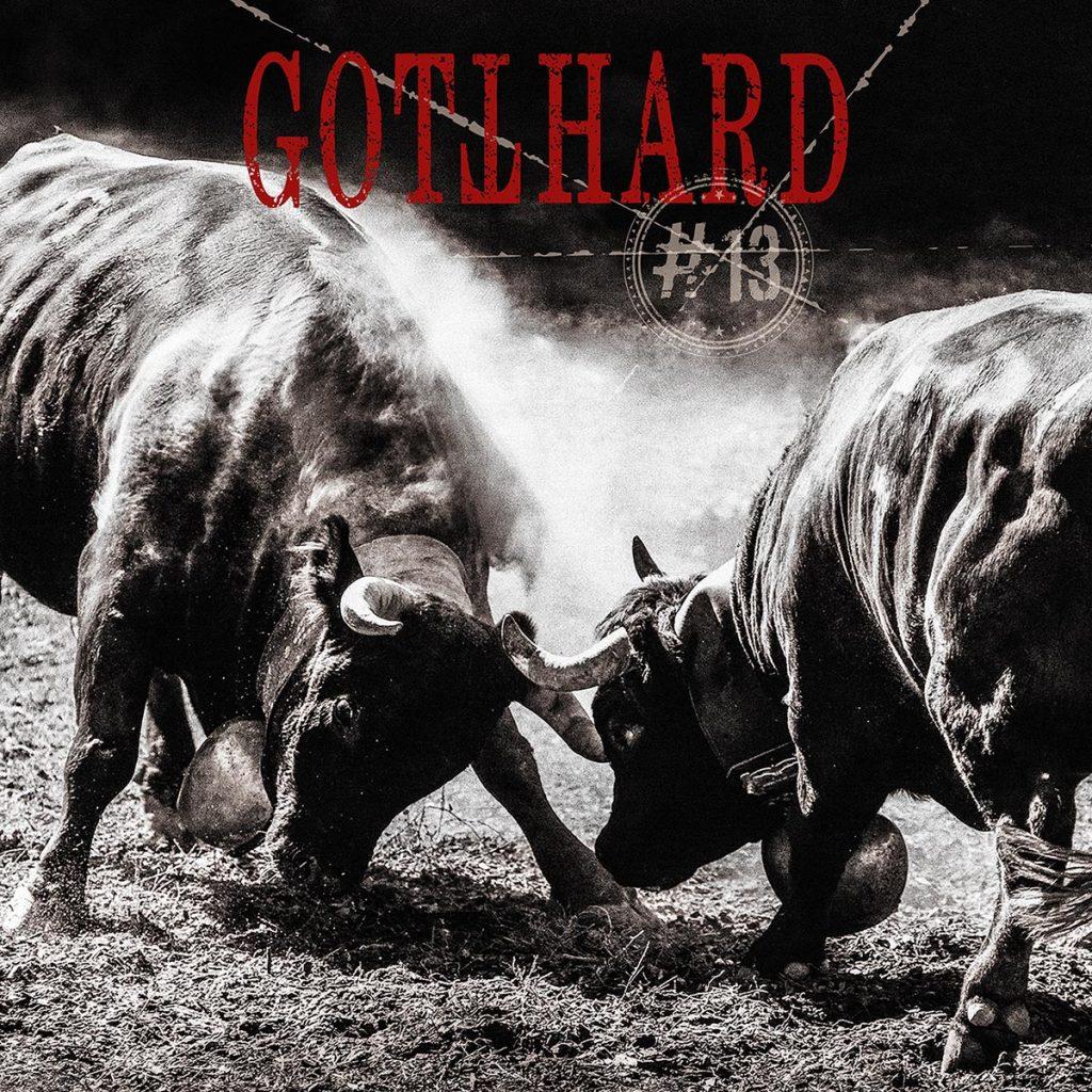 Gotthard #13