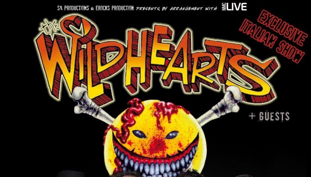 Wildhearts Druso